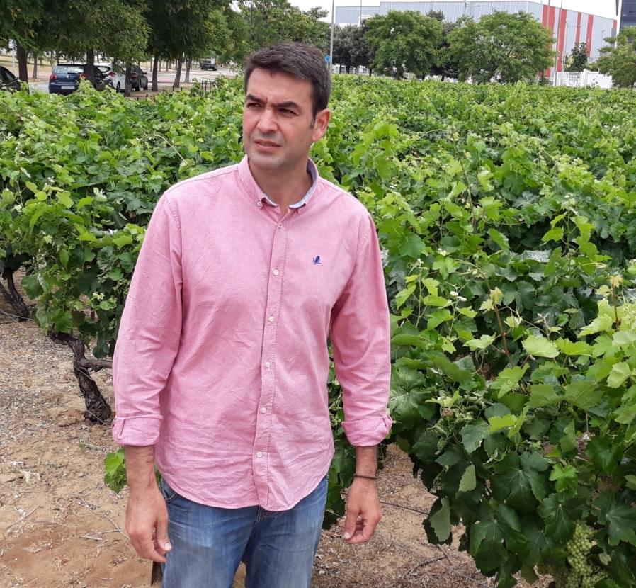 Photo of Andalucía ha hablado